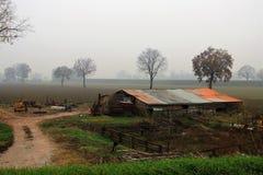 在克雷莫纳,意大利附近的乡下 图库摄影