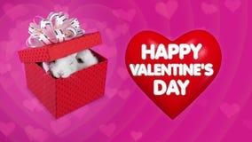 在兔子大红色心脏和夫妇的愉快的情人节消息  皇族释放例证