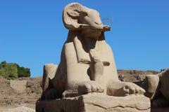 在入口的狮身人面象对卡纳克神庙寺庙 免版税库存照片