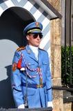 在入口的仪仗队对布拉格城堡的总统府,布拉格, 库存照片
