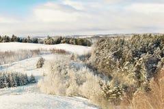 在全景滑雪瑞士冬天附近amden区 库存图片
