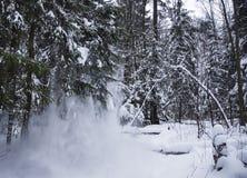 在全景滑雪瑞士冬天附近amden区 免版税库存照片