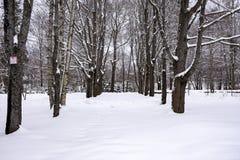 在全景滑雪瑞士冬天附近amden区 免版税库存图片