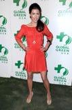 在全球绿色美国的第6每年前奥斯卡当事人的杰奎琳MacInnes木头。 Avalon好莱坞,好莱坞, CA. 02-19-09 免版税库存图片
