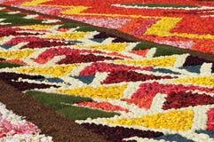 在全部安排的花地毯 库存图片