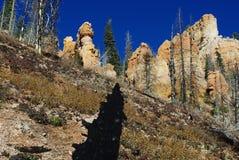 在全部视图线索, Dixie国家森林,犹他附近的颜色 库存图片