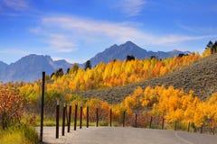 在全部Tetons的秋天 库存图片