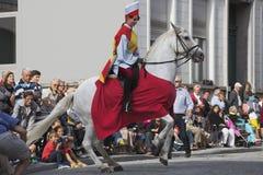 在公众前面的腾跃的马 免版税库存图片