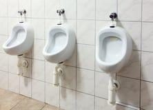 在公共厕所的结构树尿壶 免版税图库摄影
