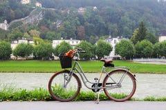 在公园、河和山的看法的一辆自行车 免版税库存图片