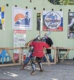 在公园与骑士战斗W的竞技场 Cherevichkin 库存图片