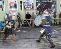 在公园与骑士战斗W的竞技场 Cherevichkin 免版税库存照片