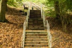 在公园中间的一个楼梯 免版税图库摄影