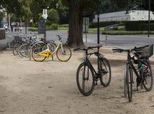在公园中间的自行车停车处 免版税库存照片