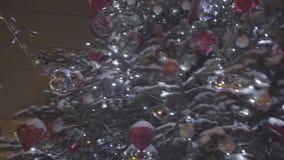 在公园中间的美好的圣诞树发光的立场 在被整理的议院前面的一棵室外圣诞树 影视素材