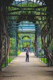 在公园供以人员与一条迷宫道路的画象 免版税库存照片