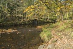 在公园和运河之间的河在Uppermill 免版税图库摄影