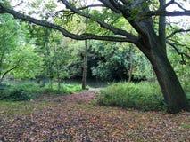 在公园图象-在秋天- Leamington温泉,英国 库存图片