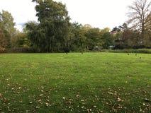 在公园图象-在秋天- Leamington温泉,英国 免版税库存图片