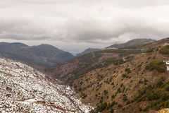 在公园工厂西班牙语附近的龙舌兰阿尔梅里雅安大路西亚cabo de desert gata横向山自然本质 库存照片