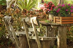 在公园把椅子换下场在庭院里 免版税库存照片