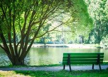 在公园换下场在一棵美丽的树,夏天,春天下 主题 库存图片