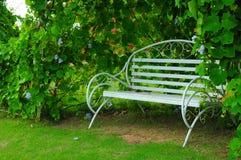 在公园放松与长凳的门 免版税库存图片