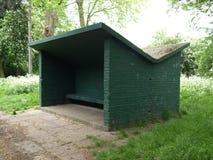 在公园森林里流洒的绿色 图库摄影
