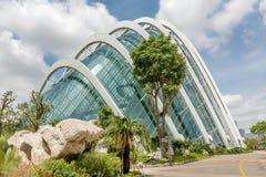 在公园滨海湾公园开花圆顶大厦在新加坡 库存照片