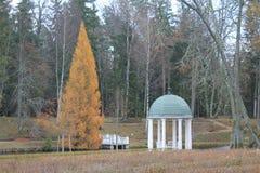 在公园的一秋天天 库存照片
