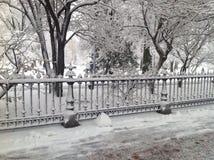 在公园的冬天 免版税库存图片