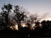 在公园的冷的日出 免版税图库摄影