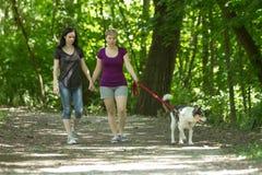 在公园的女朋友走的狗,水平 免版税库存照片