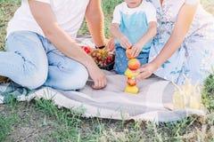 在公园的家庭野餐,修造的果子塔 免版税库存图片