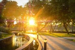 在公园的日出 免版税库存照片