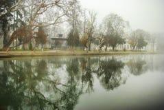 在公园的有雾的早晨 库存照片