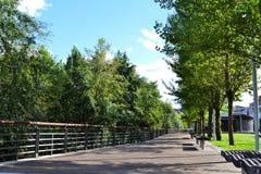 在公园的木路 免版税库存照片