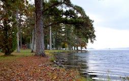 在公园的湖边 免版税库存照片