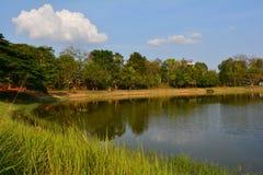 在公园的湖边 库存图片