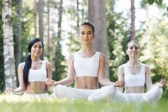 在公园的瑜伽训练 免版税库存照片