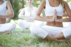 在公园的瑜伽训练 库存照片