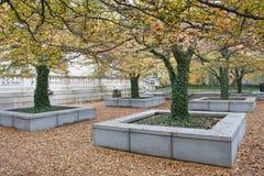 在公园的秋天树在芝加哥 免版税库存照片