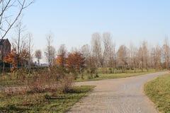 在公园的秋天 免版税库存照片