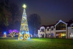 在公园的美好的圣诞节照明 免版税图库摄影