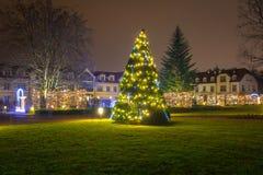 在公园的美好的圣诞节照明 库存图片