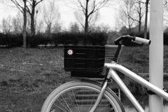 在公园的自行车 免版税库存图片