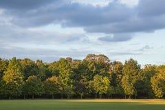 在公园的蓝天 免版税库存照片