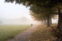 在公园的重的浓雾 库存照片