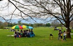 在公园的野餐 免版税库存照片