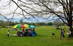 在公园的野餐 免版税库存图片